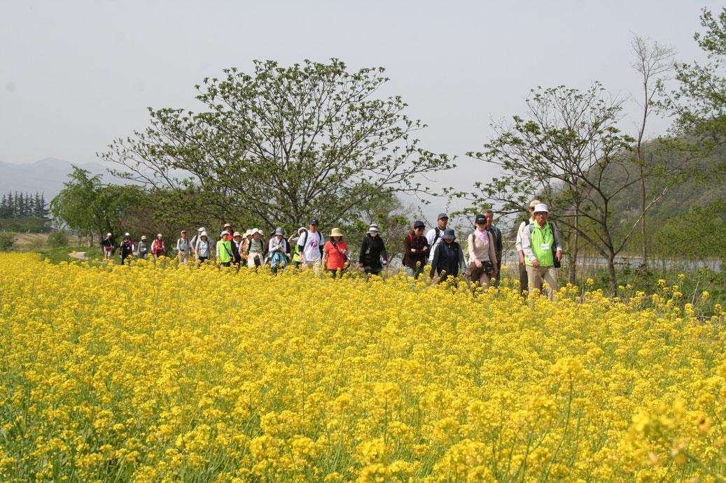 最上川舟運ルート